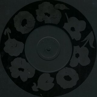 Flowers In The Dirt World Tour Pack - 'Party Party' Etched Disc